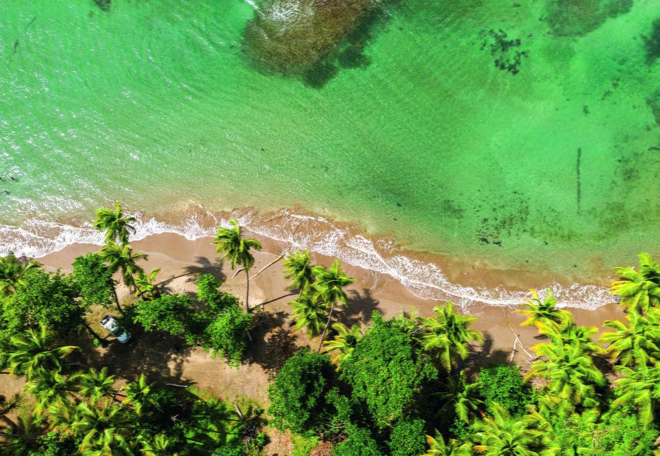 Пляж Батибу, обрамлённый кокосовыми пальмами