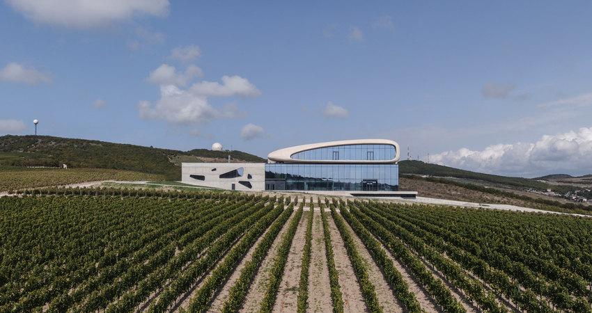Винодельня Côte Rocheuse («Скалистый берег»)