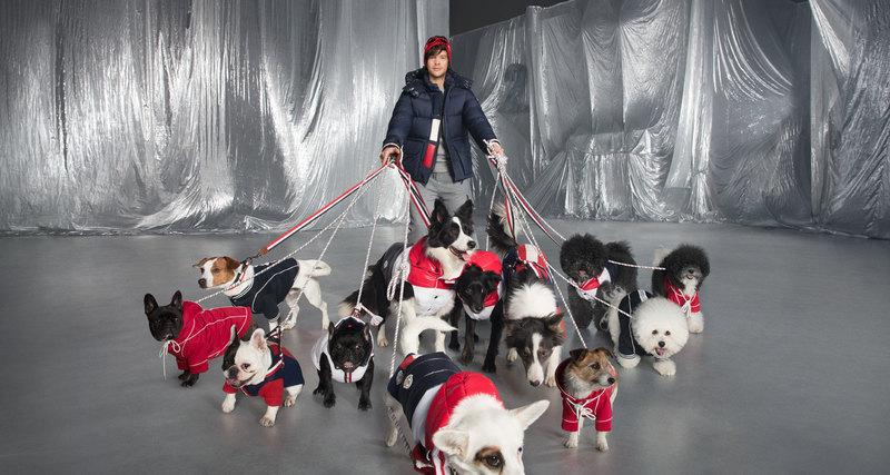 Moncler: время утеплять собак
