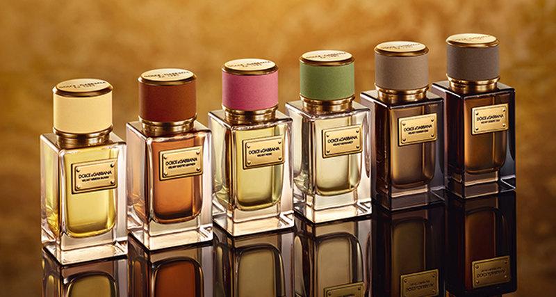 Dolce & Gabbana: традиционные новинки The Velvet Collection